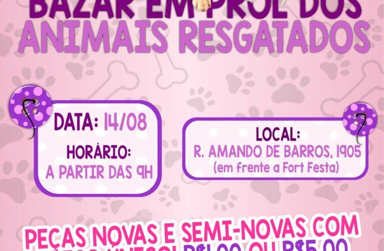 Bazar vai arrecadar fundos para animais resgatados em Botucatu no sábado, dia 14