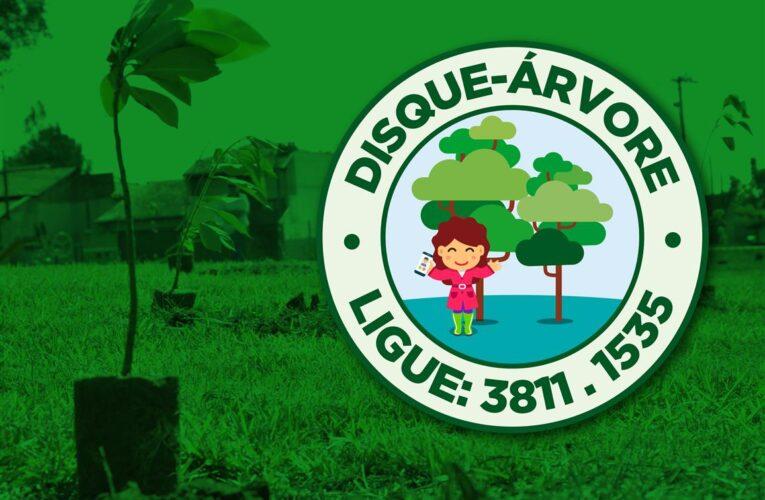 Disque-árvore disponibiliza e planta gratuitamente mudas de árvores em Botucatu