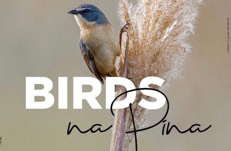 """Exposição """"Birds na Pina – Aves de Botucatu"""" já está aberta para visitação"""