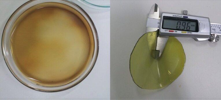 Biomaterial desenvolvido pela Unesp vai tratar incontinência de mães com diabetes na gestação